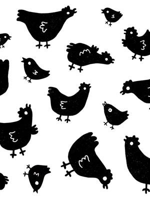illustration portfolio Stickers Gallinas cover